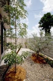 武芸川町の庭